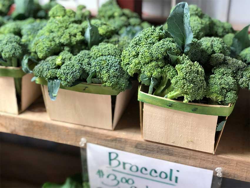 Comment cuire les brocolis?