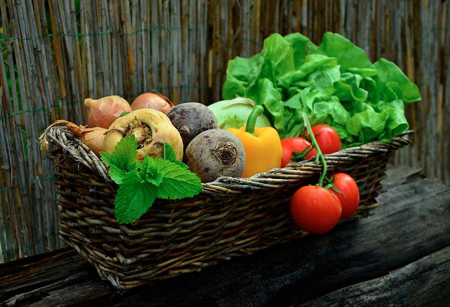 Légumes et fruits de nos régions.