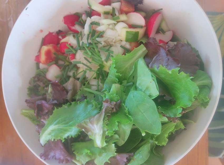 Salade fraîche d'été BIO et sa Vinaigrette maison